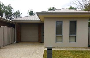 Picture of 25A Basnett Street, Kurralta Park SA 5037