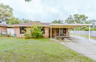 Picture of 3 Liberton Place, Coodanup WA 6210