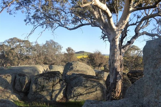 Picture of 127 Iron Post Lane, BURRUMBUTTOCK NSW 2642