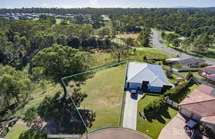 Picture of 40 Partridge Place, Singleton NSW 2330