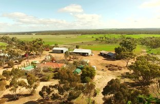 Picture of 209 Cemetery Road, Toolibin WA 6312