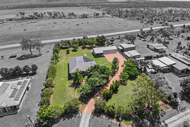 Picture of 7 Greengum Court, BLACK RIVER QLD 4818