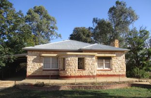 Picture of 606 Kingston Rd, Moorook SA 5332