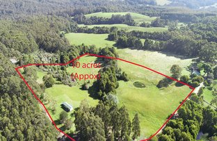 Picture of 410 Aire Settlement Road, Johanna VIC 3238