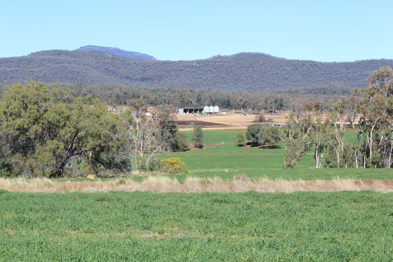 Arcadia, Bellata NSW 2397, Image 2