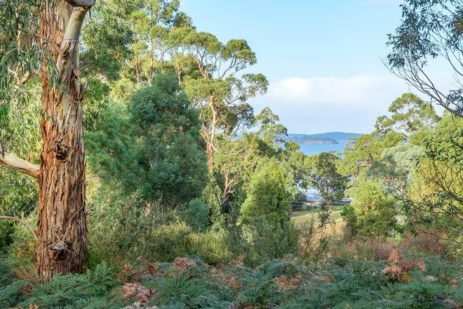 Picture of Lot 3 Amelia Street, GORDON TAS 7150