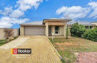 Picture of 17 Brandis Road, Munno Para West SA 5115