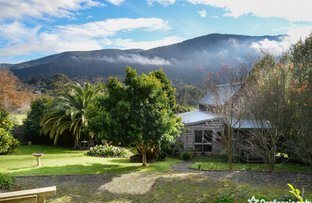 Picture of 14 Park Road, Warburton VIC 3799