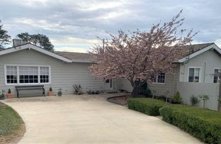 Picture of 223 Maybe Street, Bombala NSW 2632