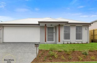 Picture of 6 Krause Street, Bellbird Park QLD 4300