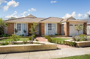 Picture of 17 Gundowring Drive, Seabrook VIC 3028