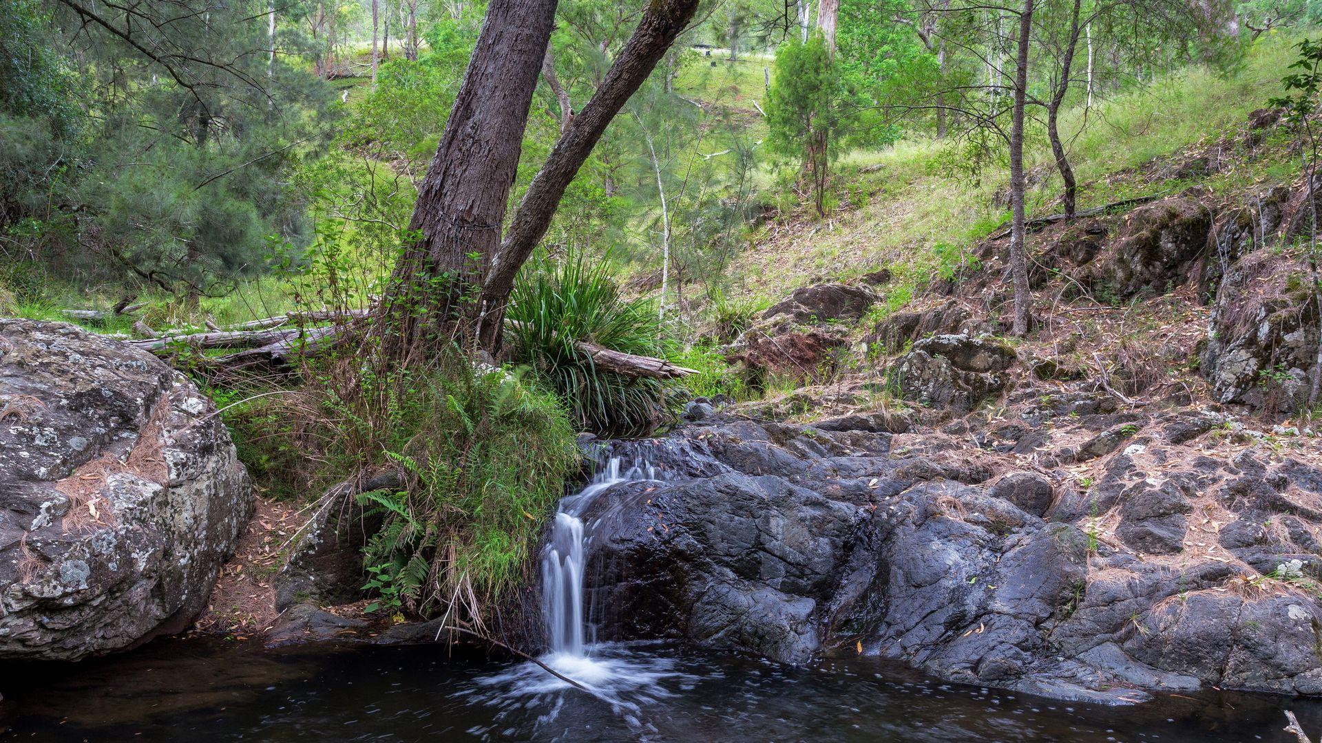 188 Enfield Range Road, Cooplacurripa NSW 2424, Image 2