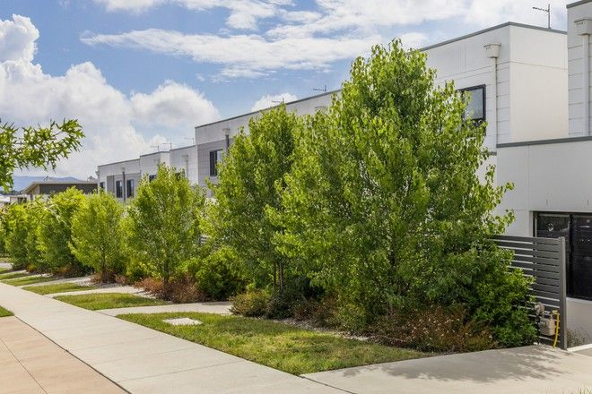 Picture of LAWSON ACT 2617