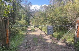 Picture of * Bullen Bullen Rd, Waukivory NSW 2422
