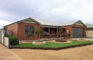 Picture of 13 Harrier Street, Shepparton VIC 3630