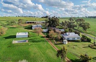 Picture of 1520 Loombah Road Bournewood via, Wellington NSW 2820