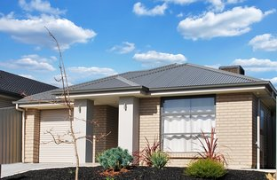Picture of 11 Willandra Street, Seaford Heights SA 5169