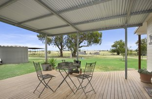 Picture of 'Ingleby' Warral Road, Tamworth NSW 2340