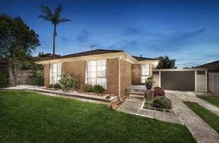 Picture of 61 Mildura Crescent, Endeavour Hills VIC 3802