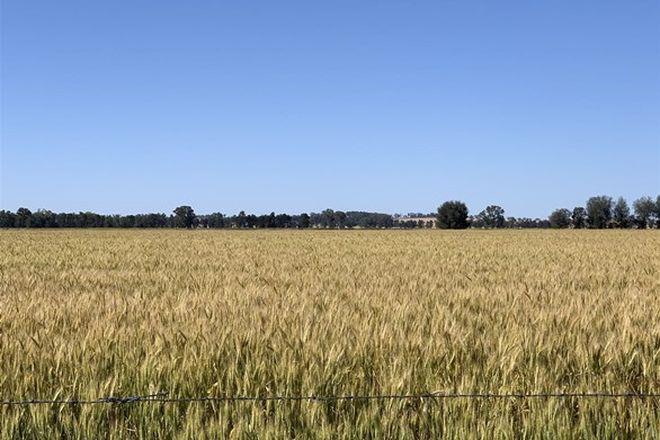 Picture of 'Linwood' Kardinia Road, COROWA NSW 2646