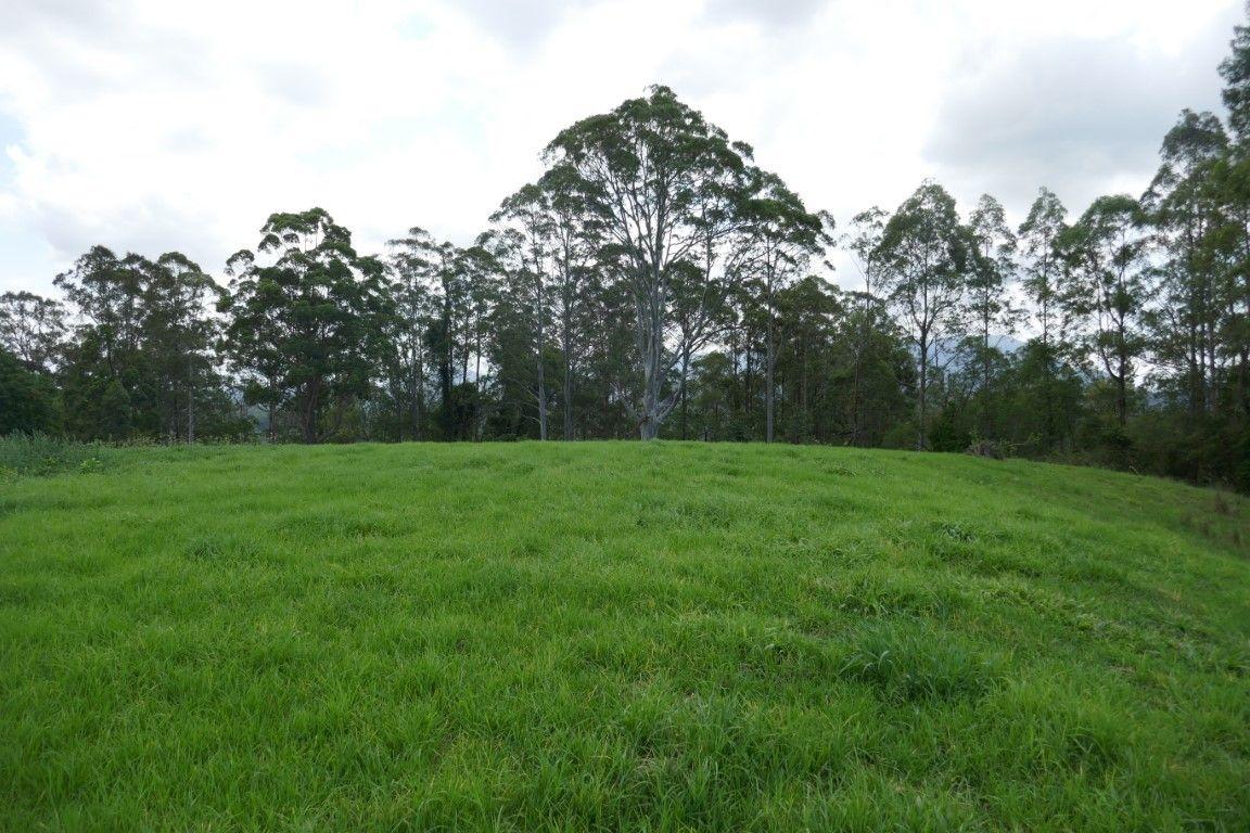 LOT 3 Kyogle Murwillumbah Road, Wadeville NSW 2474, Image 1
