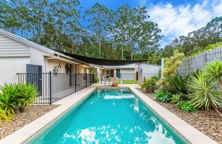 Picture of 15 Tinaroo Place, Tewantin QLD 4565