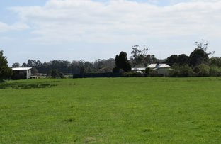 Picture of 251 New Bed Road, Railton TAS 7305