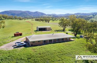"""Picture of """"Hillside"""" 777 Nundle Road, Piallamore, Tamworth NSW 2340"""