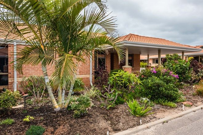 Picture of 41/20 Francis Street, GERALDTON WA 6530