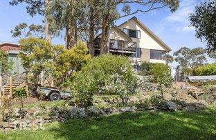 69B Olinda Grove, Mount Nelson TAS 7007
