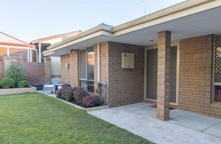 Picture of 39 Ainslie Court, Kardinya WA 6163