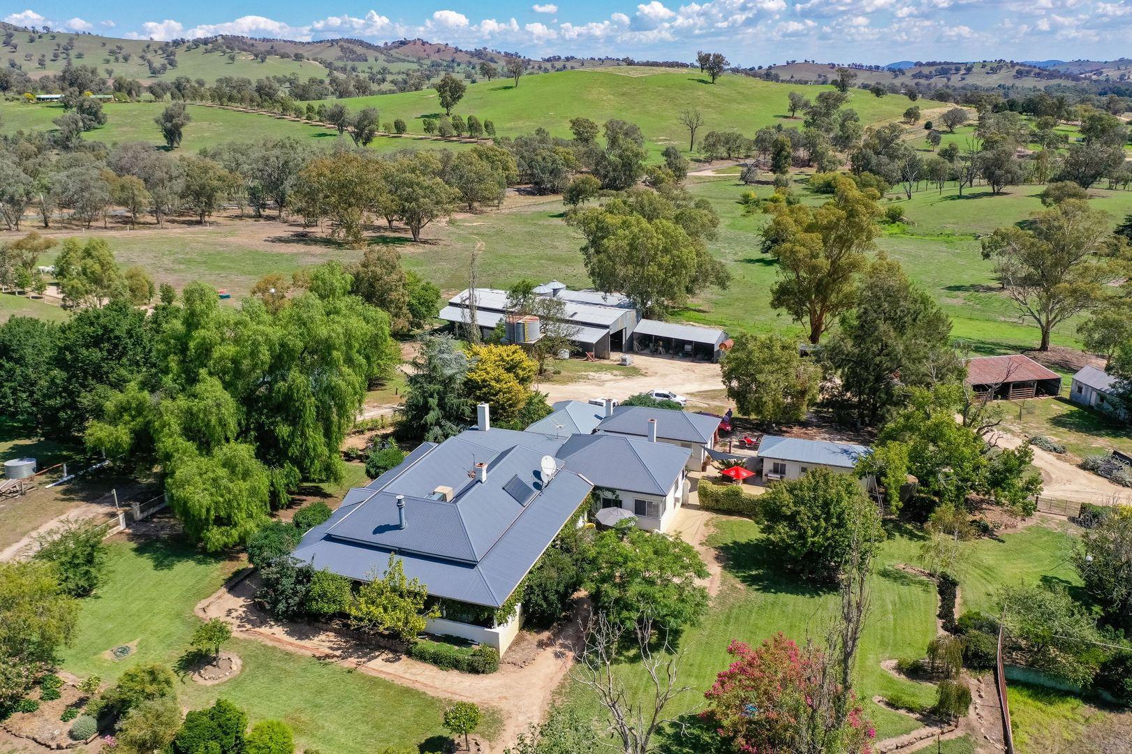 1233 Wymah Road, Bowna NSW 2644, Image 0
