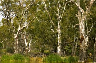 1771 Perricoota Road, Moama NSW 2731
