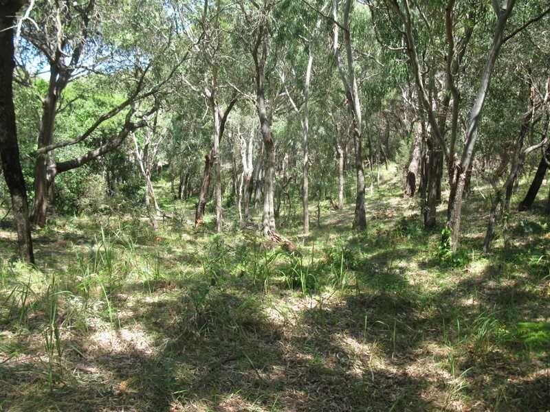 Matchbox, Deepwater QLD 4674, Image 0