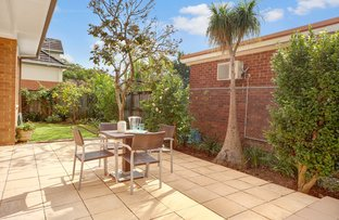 Picture of 76 Darnley Street, Gordon NSW 2072