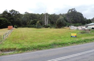 Picture of 2375a Gordon River Road, National Park TAS 7140