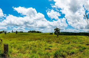 Picture of Lot 194 Heidke Road & Lot 2 Russell Road, North Johnstone QLD 4885