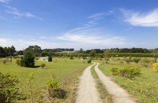 Picture of 417 Main Creek Road, Main Ridge VIC 3928