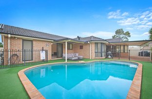 Picture of 1 Primula Close, Woongarrah NSW 2259