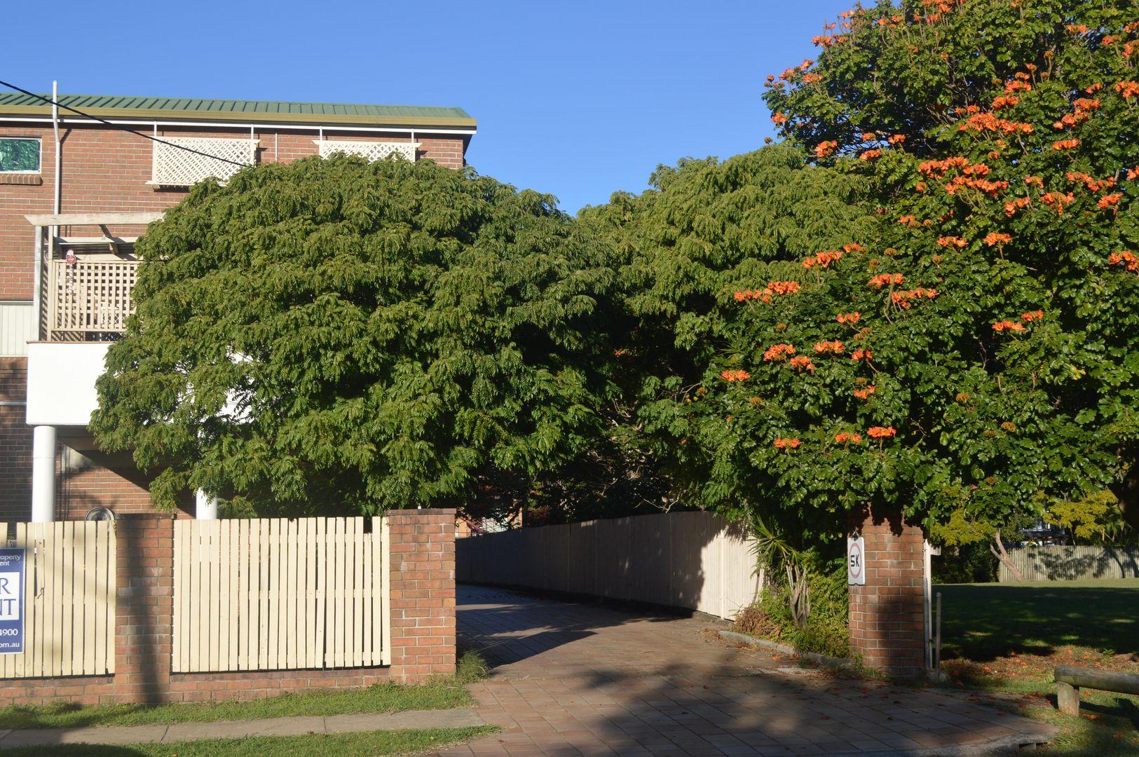 3/62 Fisher Street, East Brisbane QLD 4169, Image 1