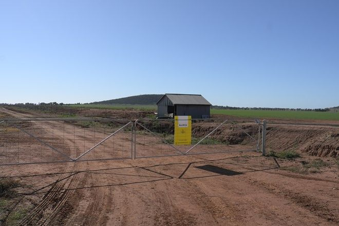 Picture of Farm 493 Mirrool Road, MURRAMI NSW 2705