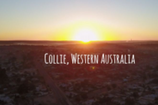 Picture of COLLIE WA 6225