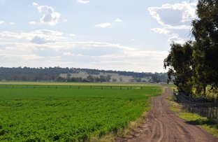 Manuka Farm, Quirindi NSW 2343