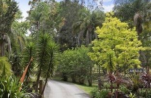 Picture of 40 Fern Tree Lane, Palmdale NSW 2258
