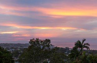 Picture of 29 McKillop Road, Beacon Hill NSW 2100
