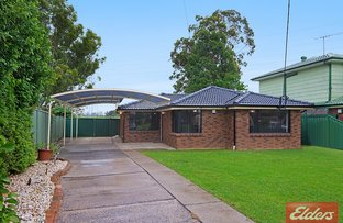 Picture of 78 Greenmeadows Crescent, Toongabbie NSW 2146