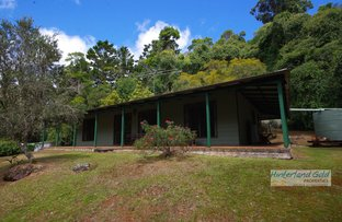 Picture of 2986 Lamington National Park Road, Canungra QLD 4275