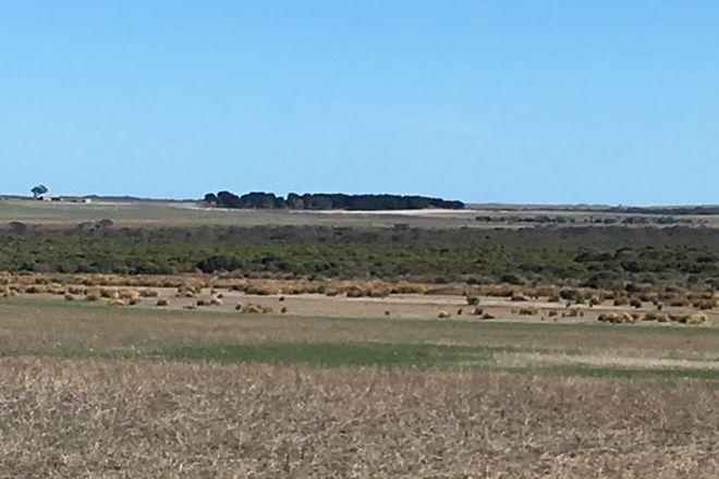 Picture of Lot 5 Springdale Road, MUNGLINUP WA 6450