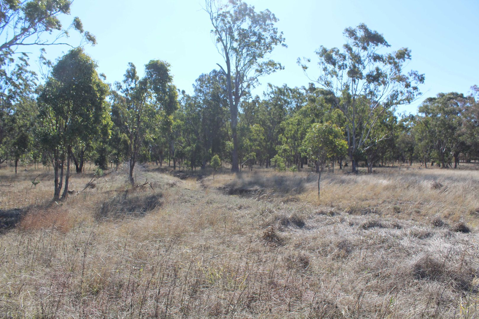 Lot/14 Armbruster Road, Junabee QLD 4370, Image 2