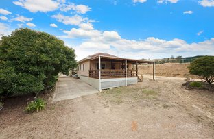 Picture of 3196 Whittlesea - Yea Road, Flowerdale VIC 3717